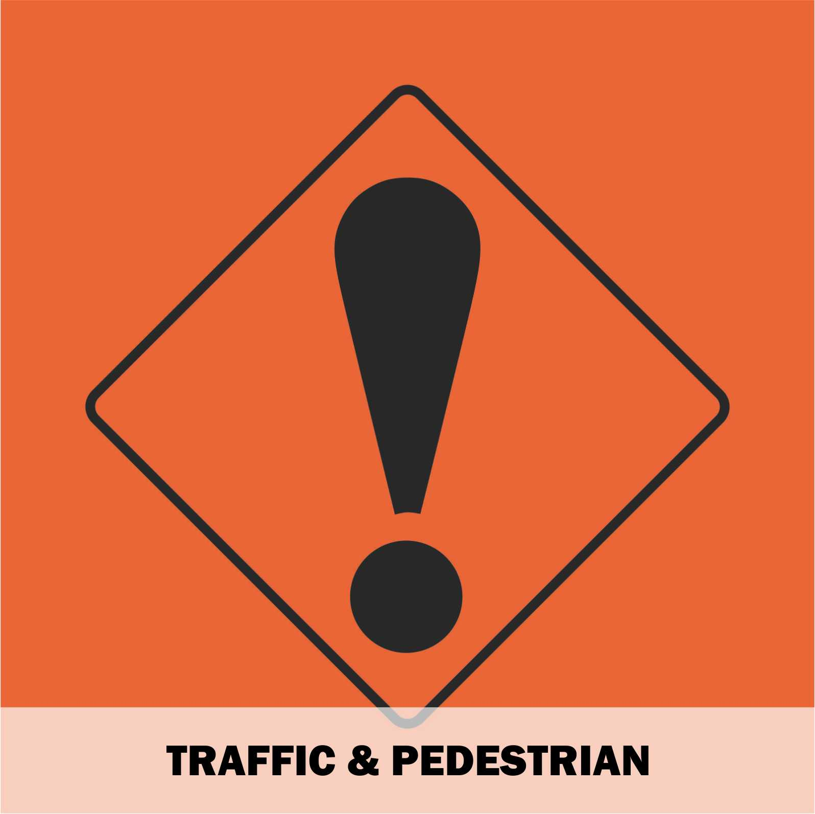 Traffic & Pedestrian